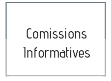 Comissions informatives
