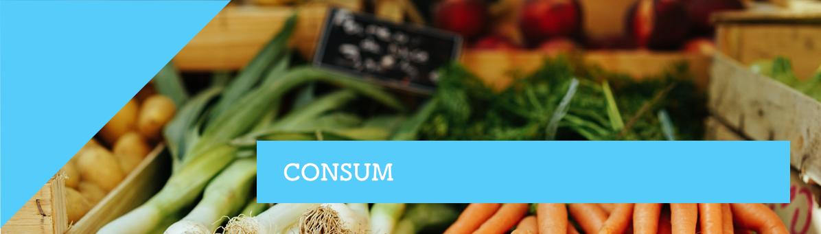 Consulta de Consum