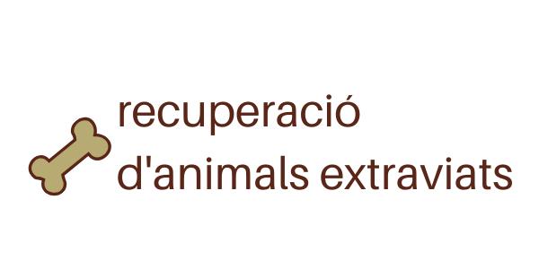 recuperació animals abandonats