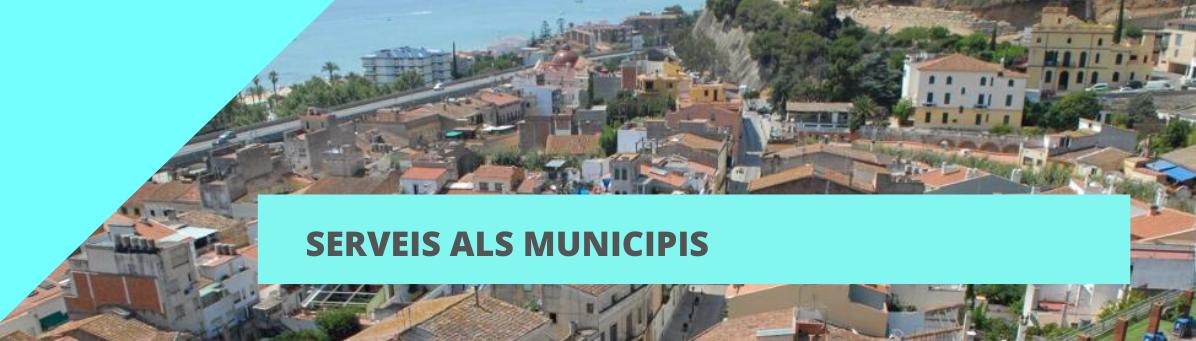 Servei d'informació als municipis (SIM)